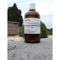 Cananga odorata (Ylang-ylang)