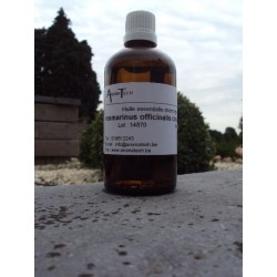 Rosmarinus officinalis cineol (Rosemary cineol)